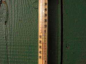 Dszd_Yakov Trophymovich's Thermometer, 28 February 2010