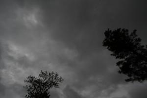 'タイガの雨空'
