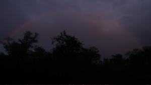 '虹 - радуга'